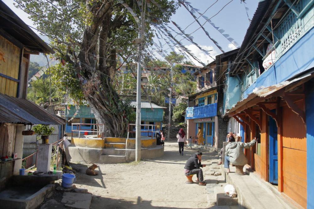 Nepal, Annapurna, Manaslu, Tsum Valley, Trekking, Wandern, Himalaya